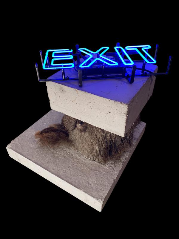 Exit Schwein von Cuno Sauerteig